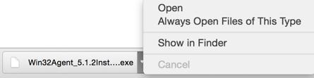 Chrome Download Bar Screenshot