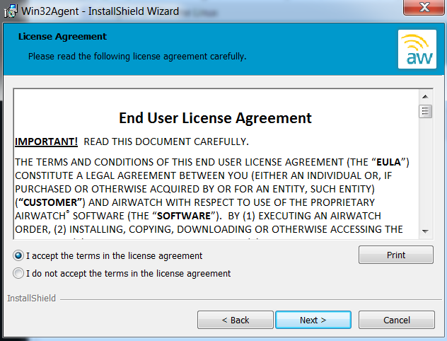 Win32Agent InstallShield License Agreement Screenshot